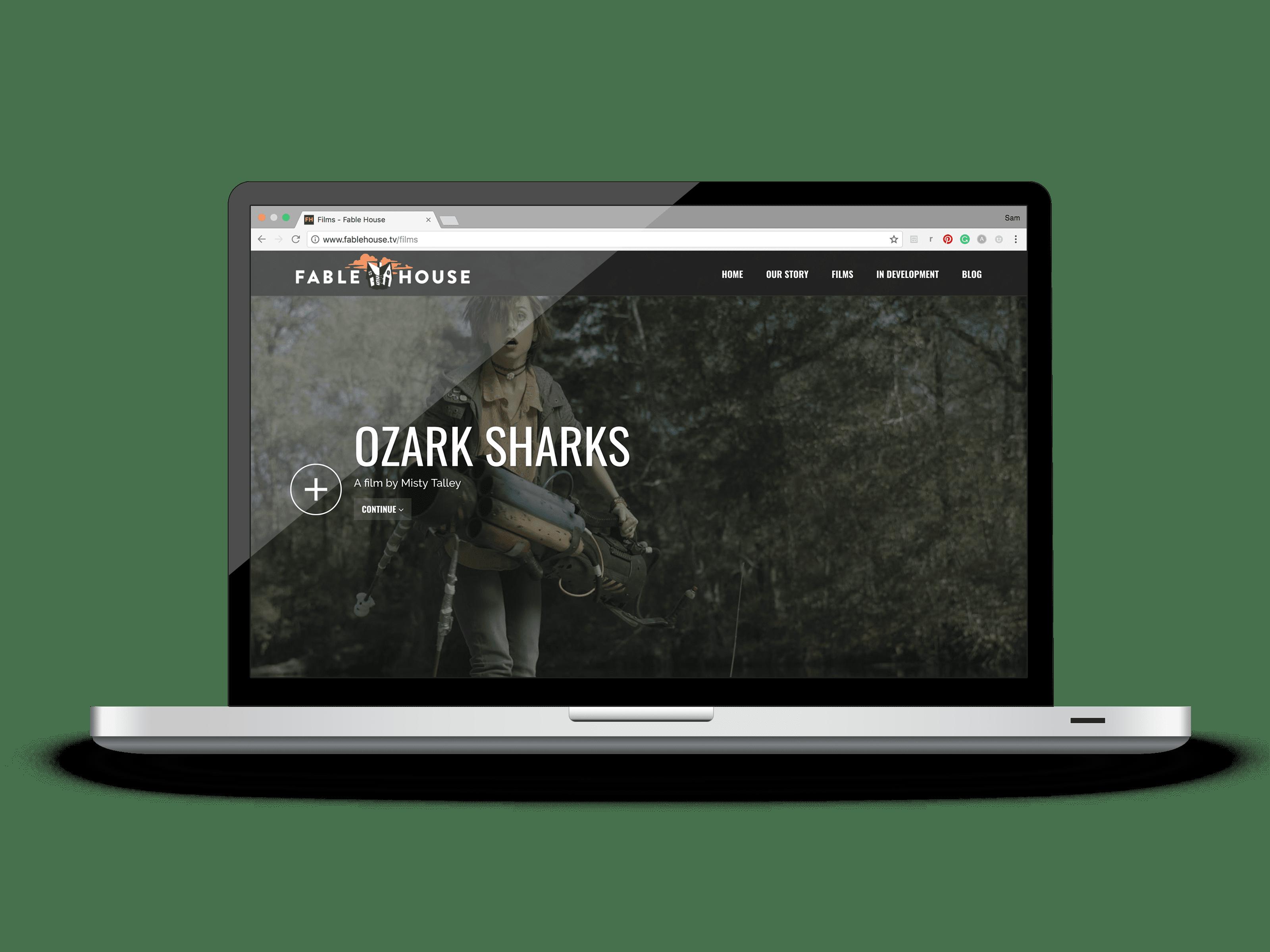 Website Design and Development in Baton Rouge LA